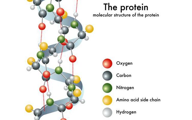 POLYPEPTIDES- LUMANANO GIẢI PHÁP CHO LÀN DA SĂN CHẮC Peptide là gì?  Xét theo yếu tố khoa học, peptide thực chất là những mảnh protein nhỏ, được tạo thành từ các axit amin. Thông thường, khi làn da thiếu đi thành phần này, kết cấu da sẽ không còn nguyên vẹn và kết quả […]